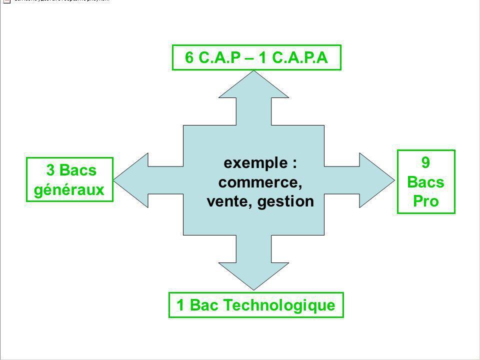 exemple : commerce, vente, gestion 6 C.A.P – 1 C.A.P.A 1 Bac Technologique 9 Bacs Pro 3 Bacs généraux