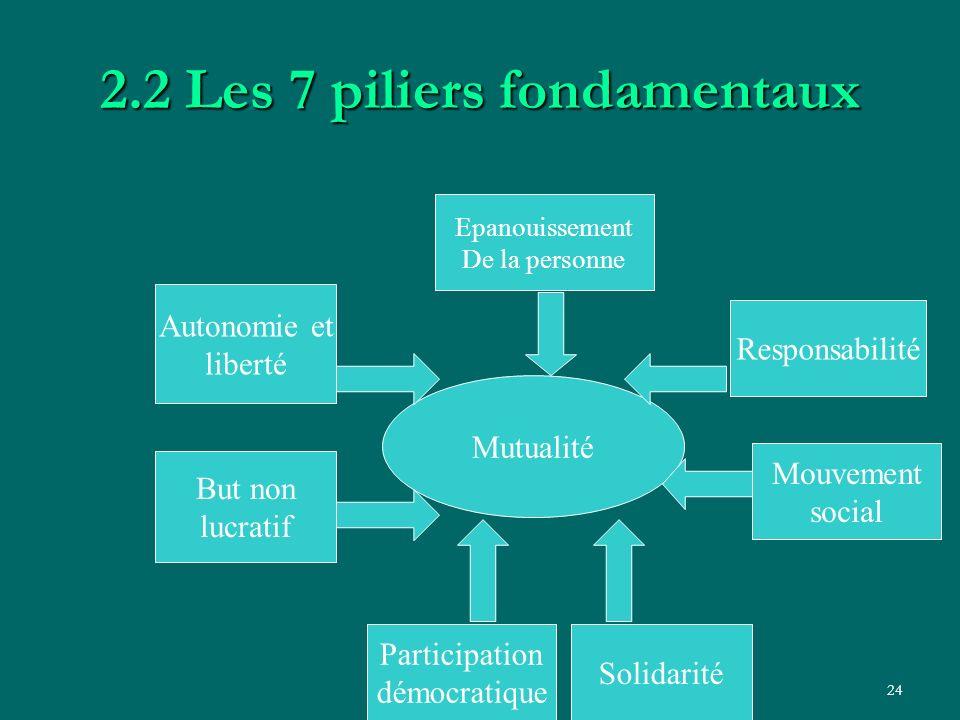 LD - LISA II Bénin24 2.2 Les 7 piliers fondamentaux Mutualité But non lucratif Participation démocratique Autonomie et liberté Solidarité Mouvement so