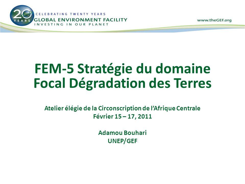 FEM-5 Stratégie du domaine Focal Dégradation des Terres Atelier élégie de la Circonscription de lAfrique Centrale Février 15 – 17, 2011 Adamou Bouhari