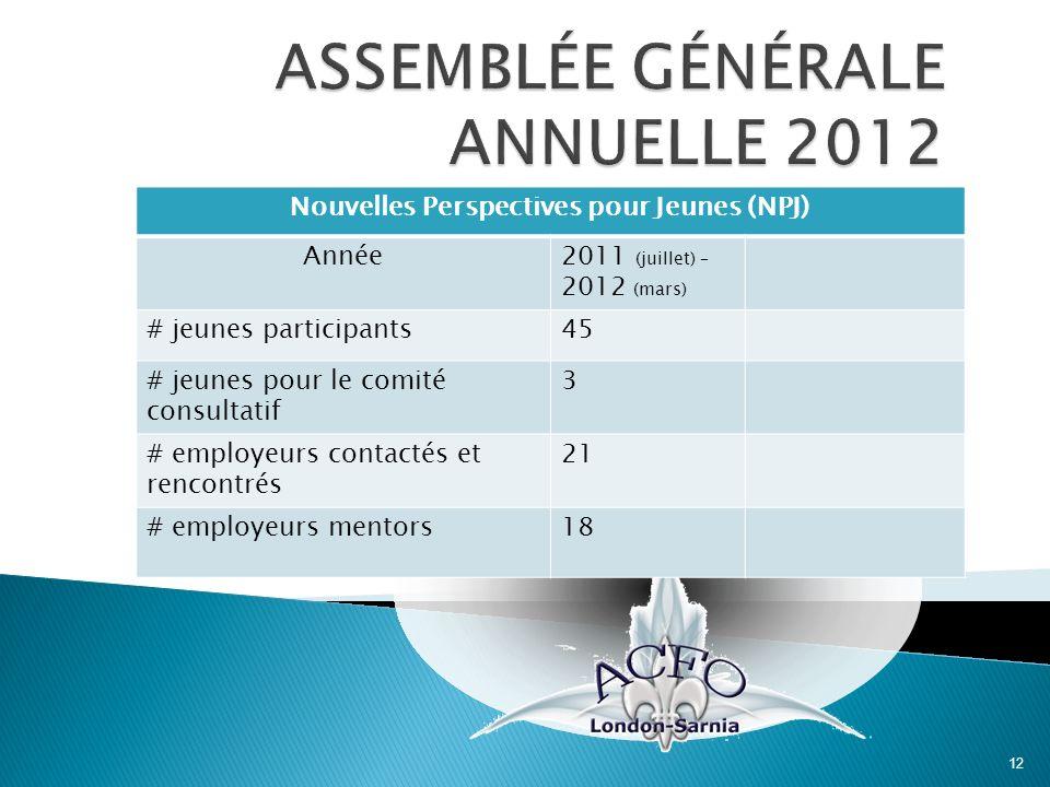 12 Nouvelles Perspectives pour Jeunes (NPJ) Année2011 (juillet) – 2012 (mars) # jeunes participants45 # jeunes pour le comité consultatif 3 # employeu