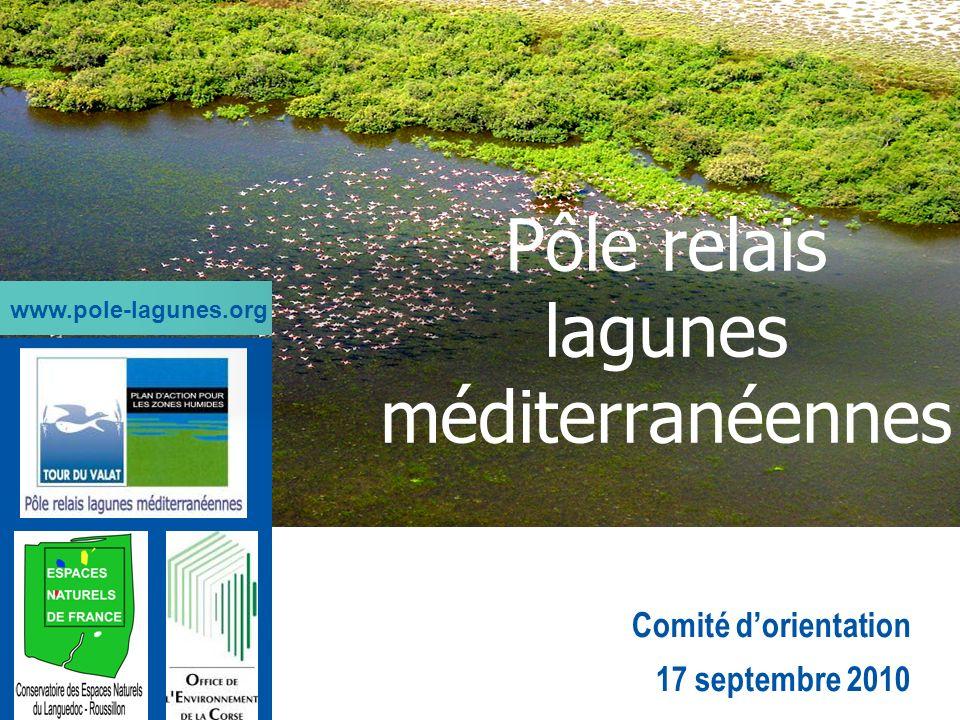 Comité dorientation 17 septembre 2010 Pôle relais lagunes méditerranéennes www.pole-lagunes.org
