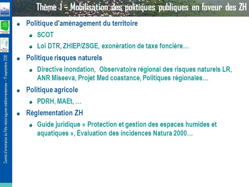 Comité dorientation du Pôle relais lagunes méditerranéennes – 17 septembre 2010 Thème 1 – Mobilisation des politiques publiques en faveur des ZH Polit