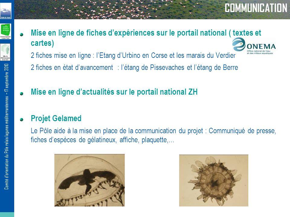 Comité dorientation du Pôle relais lagunes méditerranéennes – 17 septembre 2010 COMMUNICATION Mise en ligne de fiches dexpériences sur le portail nati