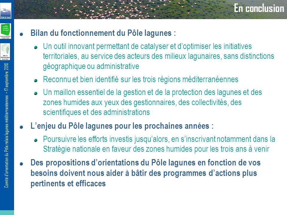 Comité dorientation du Pôle relais lagunes méditerranéennes – 17 septembre 2010 En conclusion Bilan du fonctionnement du Pôle lagunes : Un outil innov
