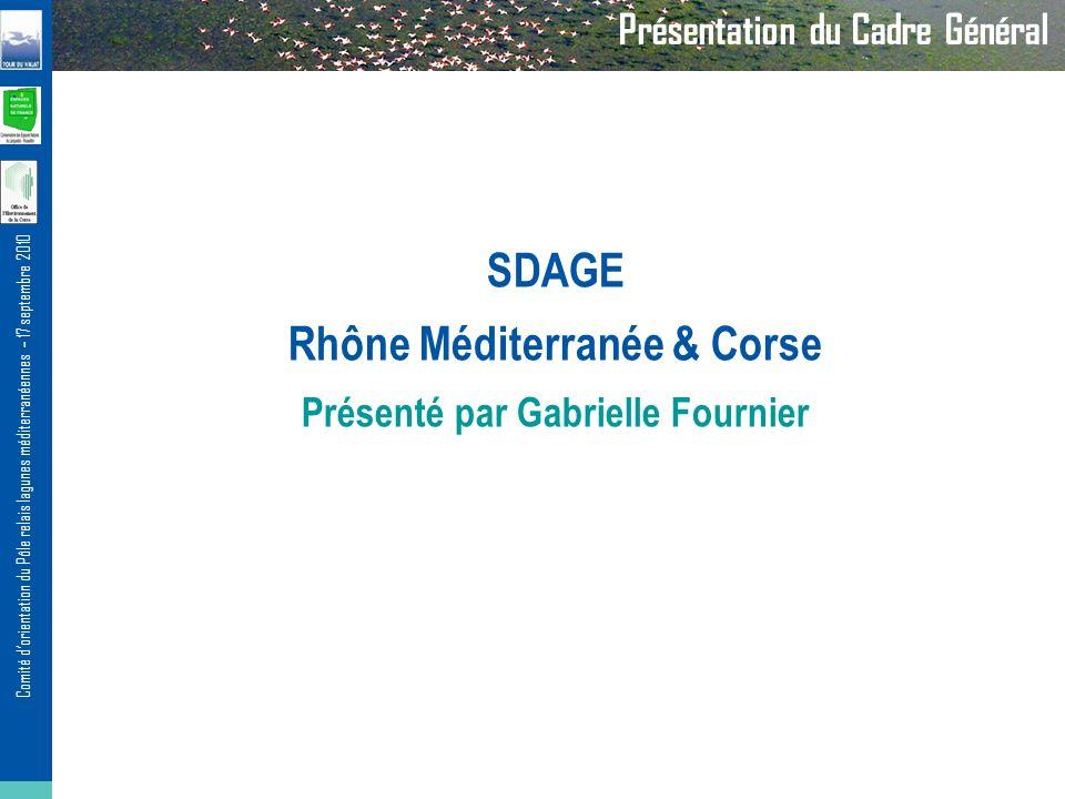 Comité dorientation du Pôle relais lagunes méditerranéennes – 17 septembre 2010 SDAGE Rhône Méditerranée & Corse Présenté par Gabrielle Fournier Présentation du Cadre Général