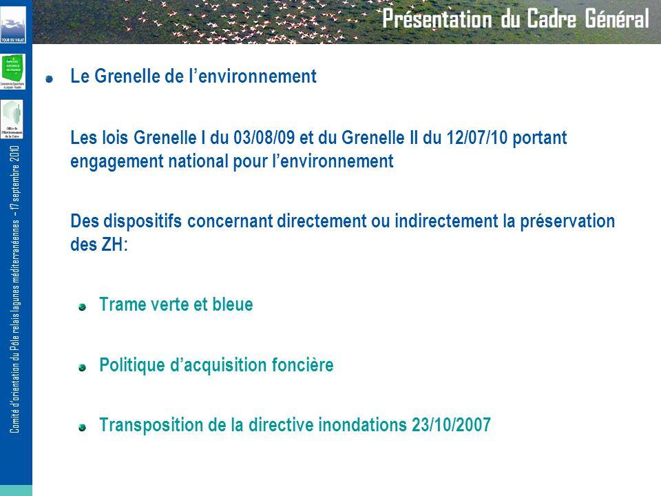 Comité dorientation du Pôle relais lagunes méditerranéennes – 17 septembre 2010 Le Grenelle de lenvironnement Les lois Grenelle I du 03/08/09 et du Gr