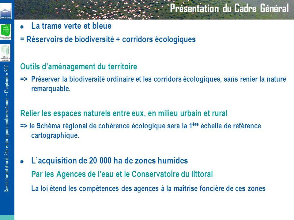 Comité dorientation du Pôle relais lagunes méditerranéennes – 17 septembre 2010 Présentation du Cadre Général La trame verte et bleue = Réservoirs de