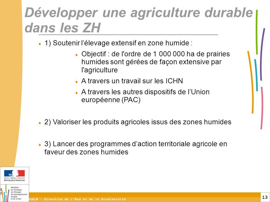 13 DGALN - Direction de l'Eau et de la Biodiversité 13 Développer une agriculture durable dans les ZH 1) Soutenir lélevage extensif en zone humide : O