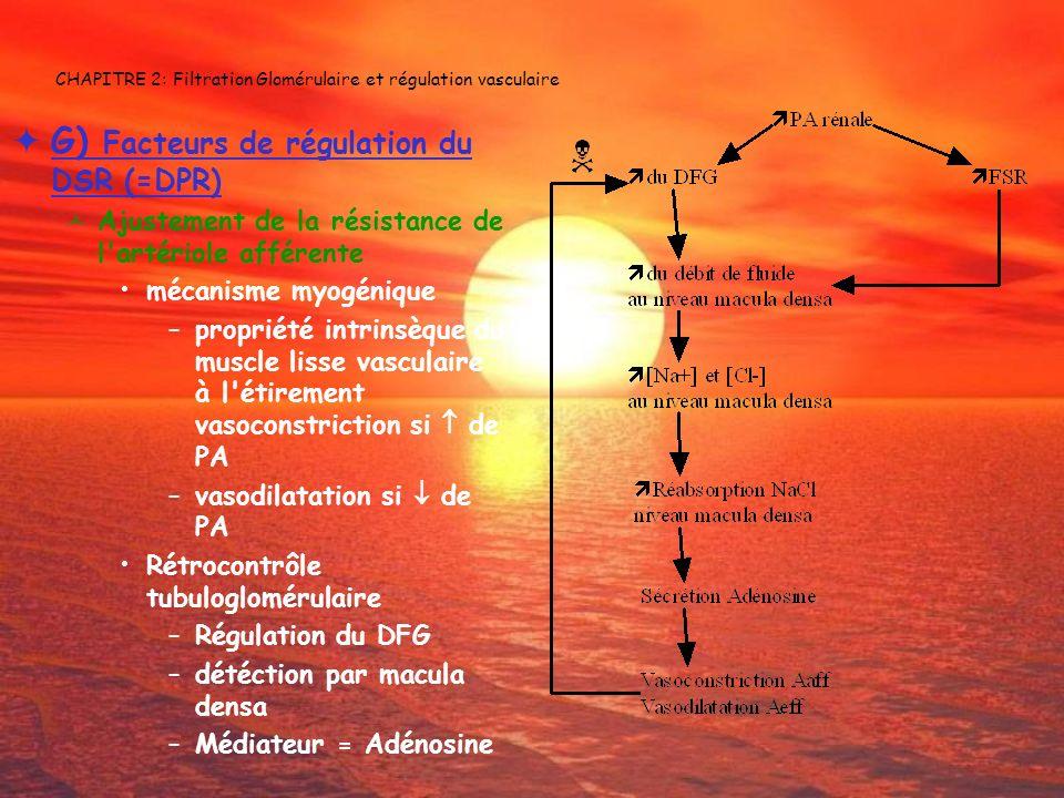 CHAPITRE 2: Filtration Glomérulaire et régulation vasculaire G) Facteurs de régulation du DSR (=DPR) Ajustement de la résistance de l'artériole affére