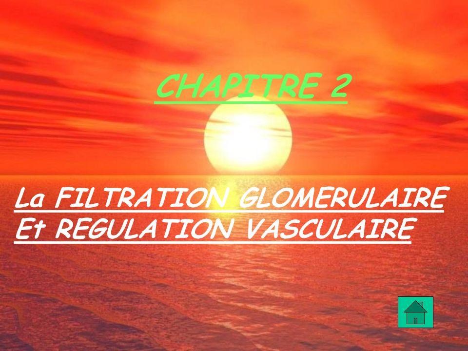 La FILTRATION GLOMERULAIRE Et REGULATION VASCULAIRE CHAPITRE 2