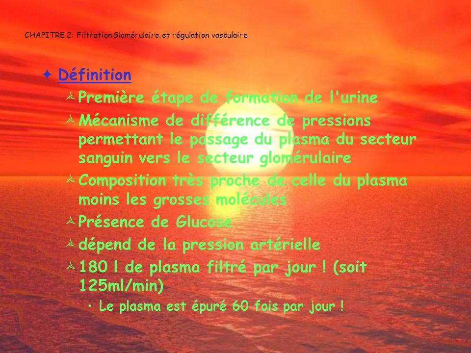 CHAPITRE 2: Filtration Glomérulaire et régulation vasculaire Définition Première étape de formation de l'urine Mécanisme de différence de pressions pe