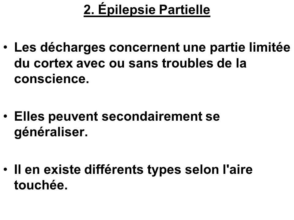 2. Épilepsie Partielle Les décharges concernent une partie limitée du cortex avec ou sans troubles de la conscience. Elles peuvent secondairement se g