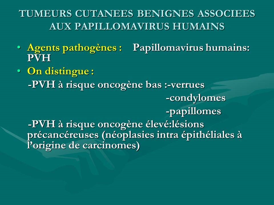 TUMEURS CUTANEES BENIGNES ASSOCIEES AUX PAPILLOMAVIRUS HUMAINS Agents pathogènes : Papillomavirus humains: PVH On distingue : -PVH à risque oncogène b