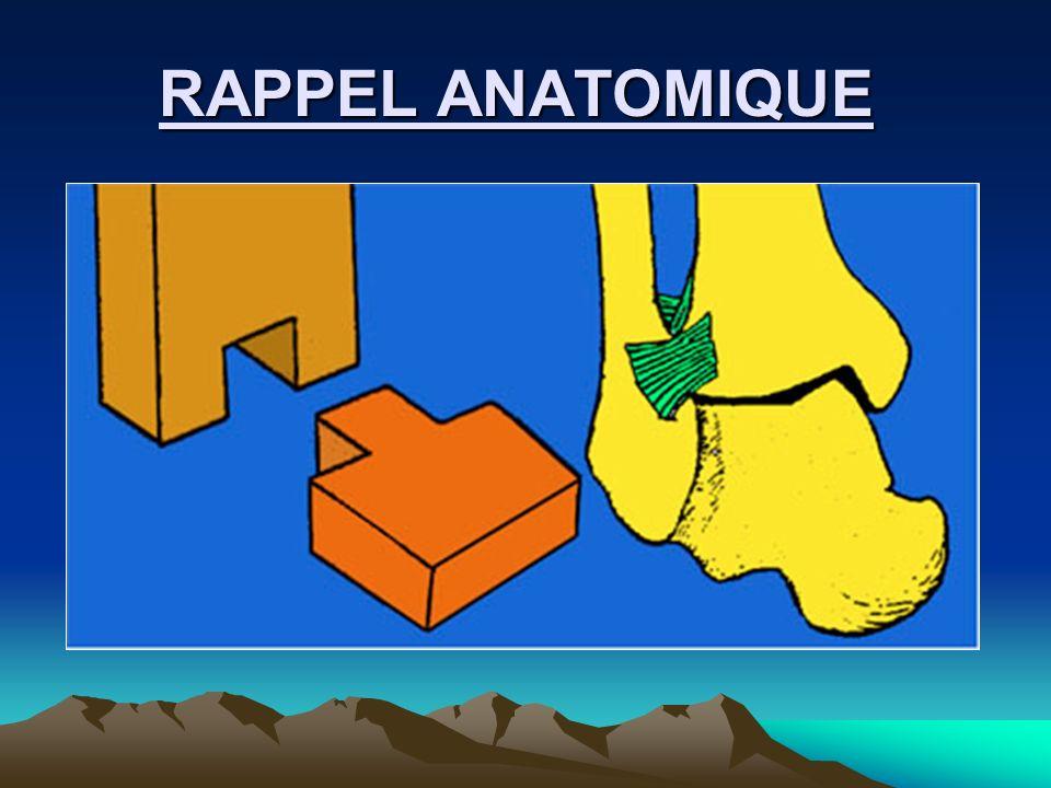 RAPPEL PHYSIOLOGIQUE RAPPEL PHYSIOLOGIQUE ADDUCTION: mouvement qui porte la pointe du pied en dedans: 0-30° ABDUCTION: mouvement qui porte la pointe du pied en dehors :0-30° SUPINATION : la plante du pied regarde en dedans : 0-35° PRONATION : la plante du pied regarde en dehors : 0- 35° FLEXION DORSALE : ou flexion = talus : 0-30° FLEXION PLANTAIRE : ou extension = équin : 0-50°