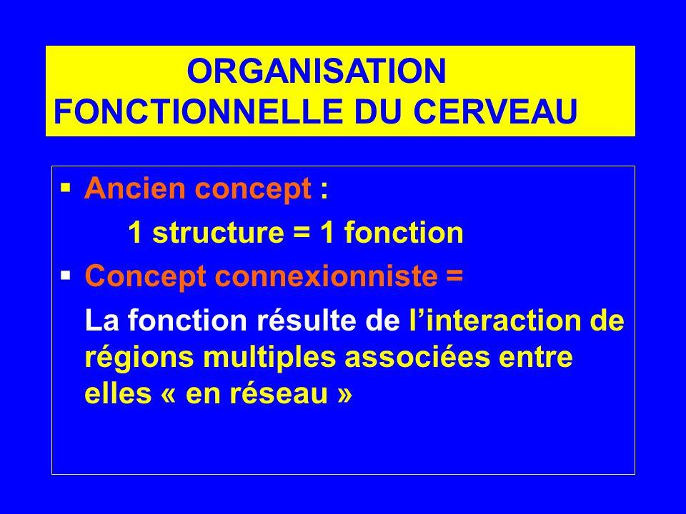 Ancien concept : 1 structure = 1 fonction Concept connexionniste = La fonction résulte de linteraction de régions multiples associées entre elles « en