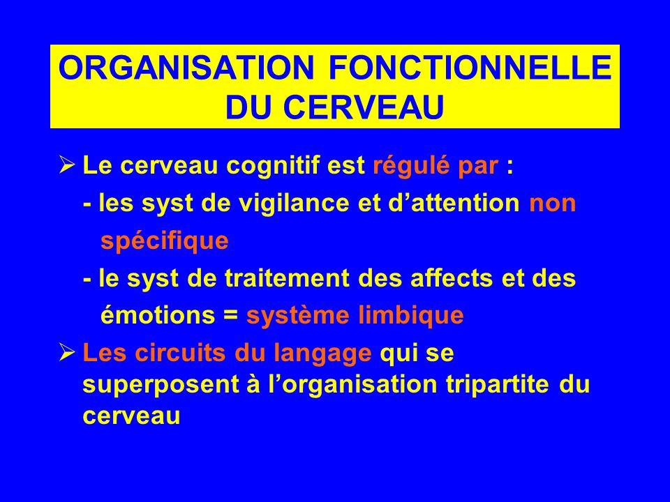 ORGANISATION FONCTIONNELLE DU CERVEAU Le cerveau cognitif est régulé par : - les syst de vigilance et dattention non spécifique - le syst de traitemen