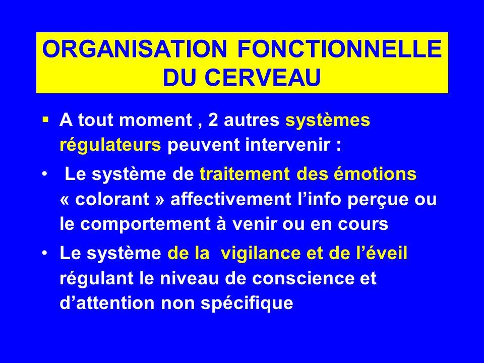 ORGANISATION FONCTIONNELLE DU CERVEAU A tout moment, 2 autres systèmes régulateurs peuvent intervenir : Le système de traitement des émotions « colora