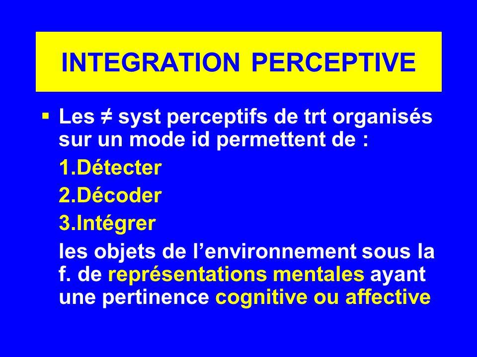 INTEGRATION PERCEPTIVE Les syst perceptifs de trt organisés sur un mode id permettent de : 1.Détecter 2.Décoder 3.Intégrer les objets de lenvironnemen