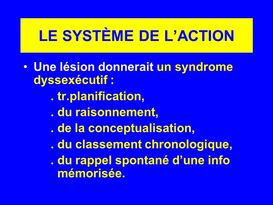 LE SYSTÈME DE LACTION Une lésion donnerait un syndrome dyssexécutif :. tr.planification,. du raisonnement,. de la conceptualisation,. du classement ch