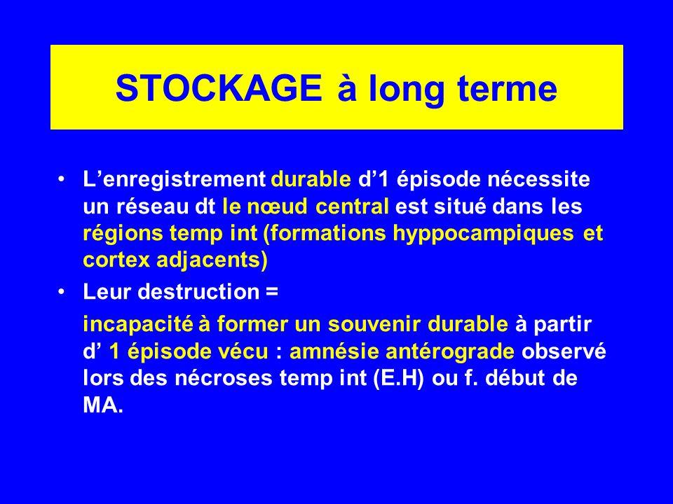 STOCKAGE à long terme Lenregistrement durable d1 épisode nécessite un réseau dt le nœud central est situé dans les régions temp int (formations hyppoc