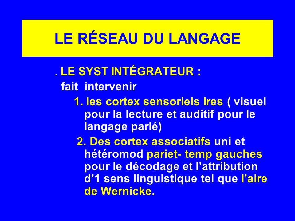 LE RÉSEAU DU LANGAGE. LE SYST INTÉGRATEUR : fait intervenir 1. les cortex sensoriels Ires ( visuel pour la lecture et auditif pour le langage parlé) 2