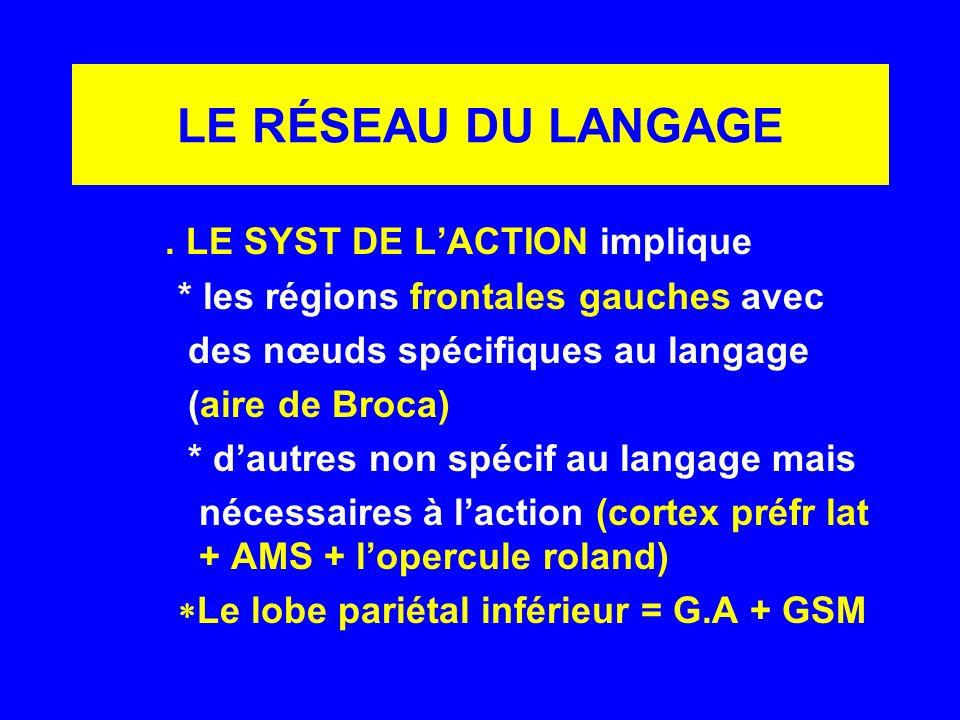 LE RÉSEAU DU LANGAGE. LE SYST DE LACTION implique * les régions frontales gauches avec des nœuds spécifiques au langage (aire de Broca) * dautres non