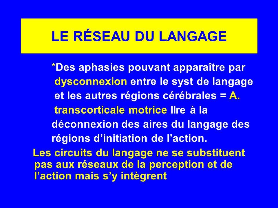 LE RÉSEAU DU LANGAGE *Des aphasies pouvant apparaître par dysconnexion entre le syst de langage et les autres régions cérébrales = A. transcorticale m