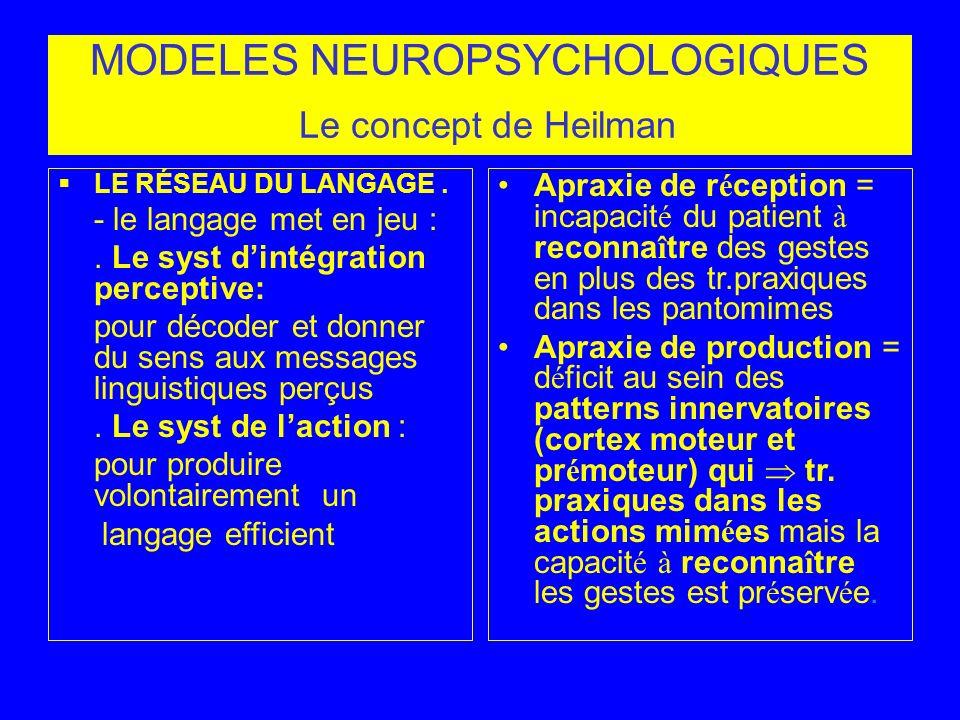 MODELES NEUROPSYCHOLOGIQUES Le concept de Heilman LE RÉSEAU DU LANGAGE. - le langage met en jeu :. Le syst dintégration perceptive: pour décoder et do