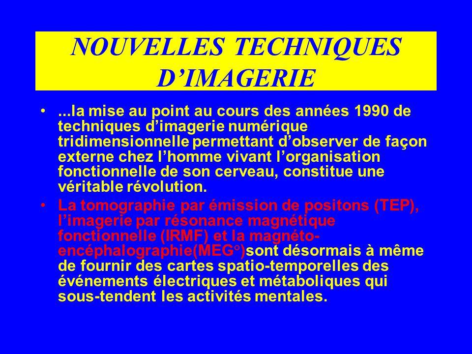NOUVELLES TECHNIQUES DIMAGERIE...la mise au point au cours des années 1990 de techniques dimagerie numérique tridimensionnelle permettant dobserver de