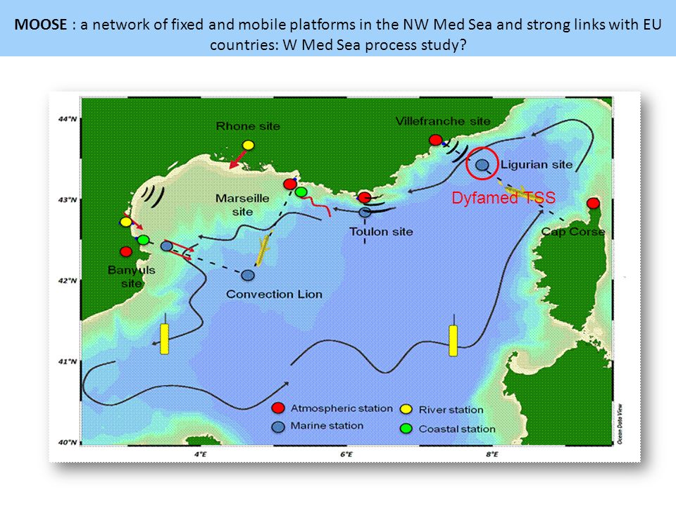 MOOSE : a network of fixed and mobile platforms in the NW Med Sea and strong links with EU countries: W Med Sea process study? Dyfamed TSS