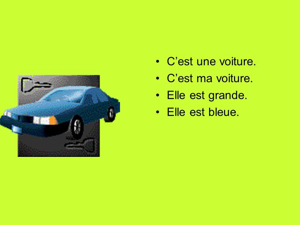 Cest une voiture. Cest ma voiture. Elle est grande. Elle est bleue.