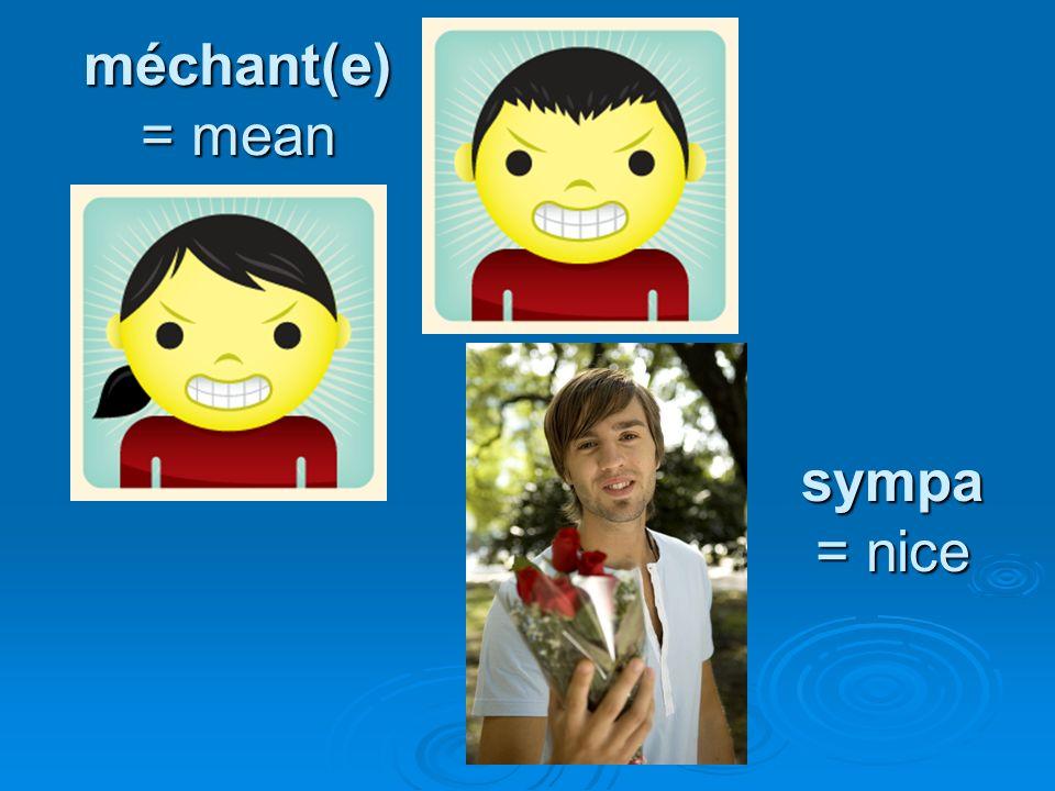 méchant(e) = mean sympa = nice