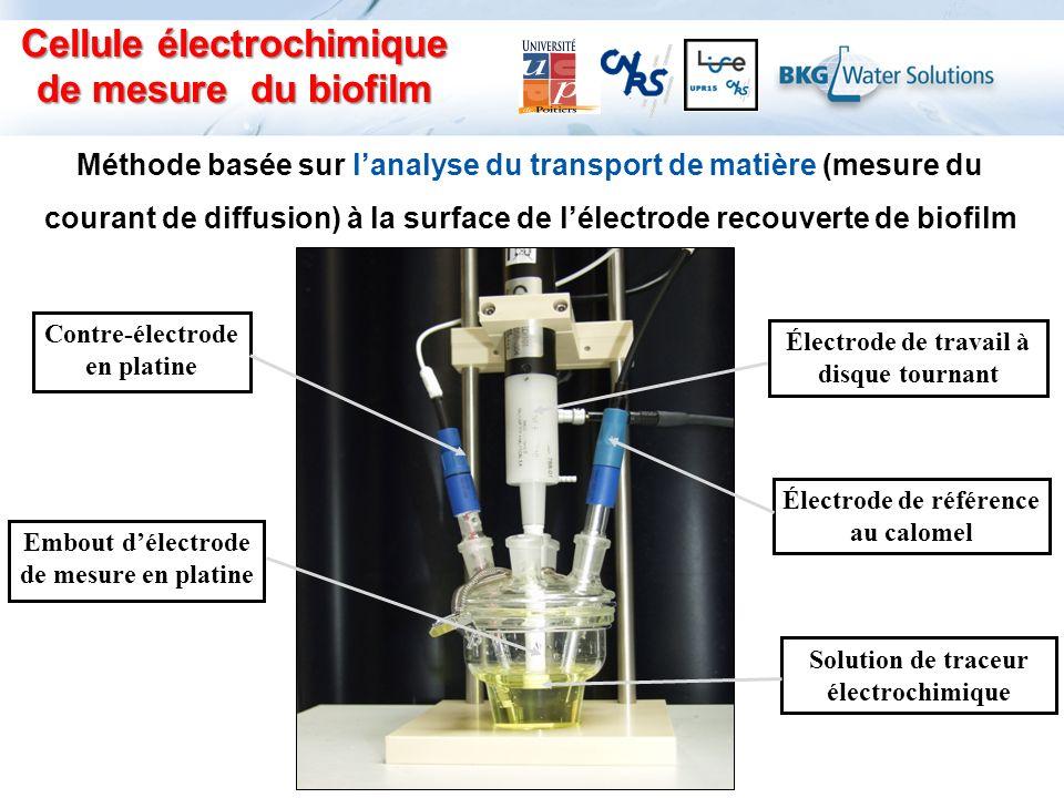 Électrode de travail à disque tournant Électrode de référence au calomel Contre-électrode en platine Solution de traceur électrochimique Embout délect