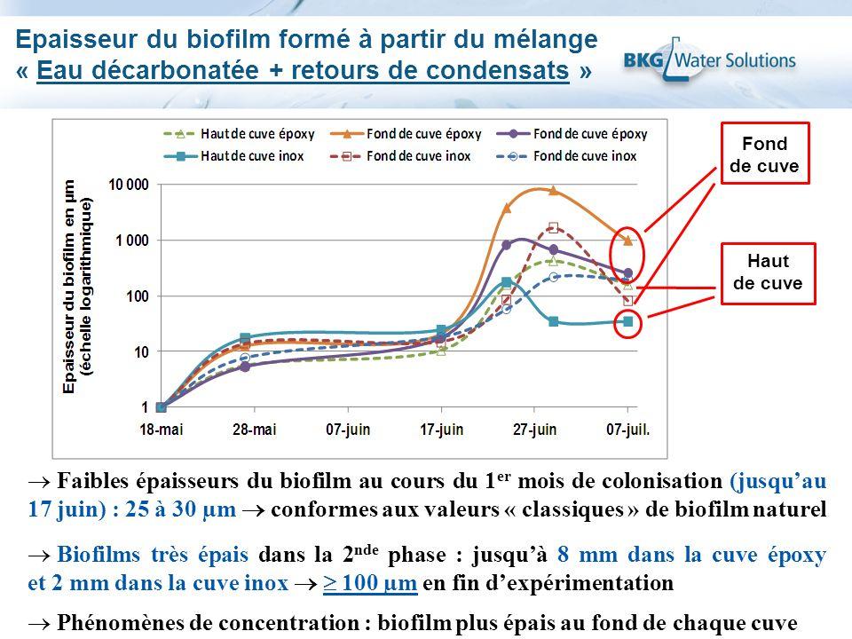 Epaisseur du biofilm formé à partir du mélange « Eau décarbonatée + retours de condensats » Fond de cuve Haut de cuve Faibles épaisseurs du biofilm au