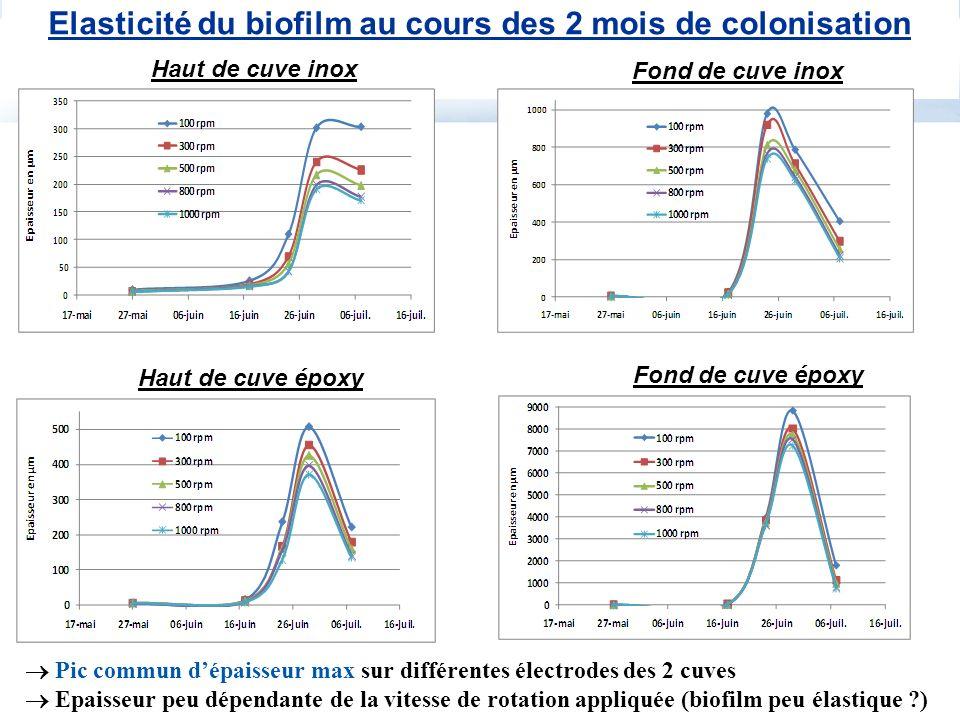 Haut de cuve époxy Fond de cuve époxy Elasticité du biofilm au cours des 2 mois de colonisation Haut de cuve inox Fond de cuve inox Pic commun dépaiss