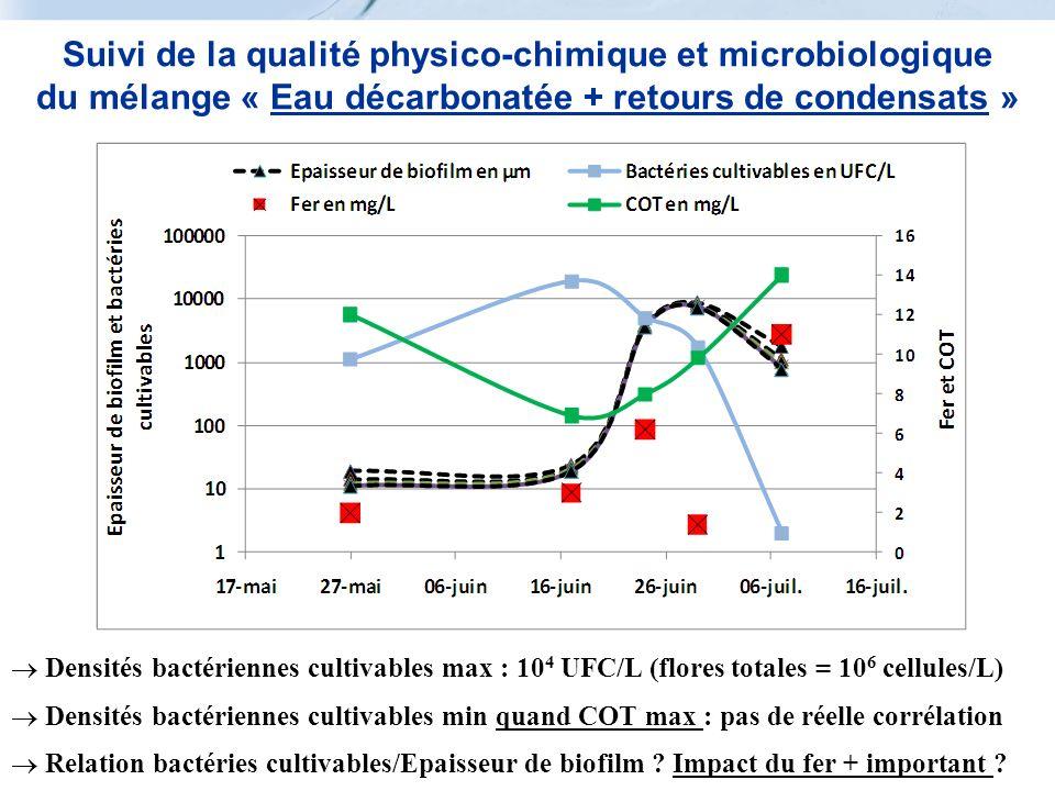 Suivi de la qualité physico-chimique et microbiologique du mélange « Eau décarbonatée + retours de condensats » Densités bactériennes cultivables max