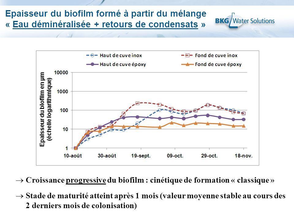 Epaisseur du biofilm formé à partir du mélange « Eau déminéralisée + retours de condensats » Croissance progressive du biofilm : cinétique de formatio