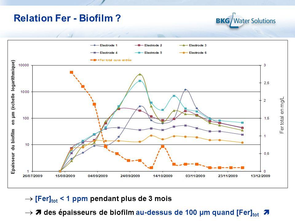 [Fer] tot < 1 ppm pendant plus de 3 mois des épaisseurs de biofilm au-dessus de 100 µm quand [Fer] tot Epaisseur du biofilm en µm (échelle logarithmiq