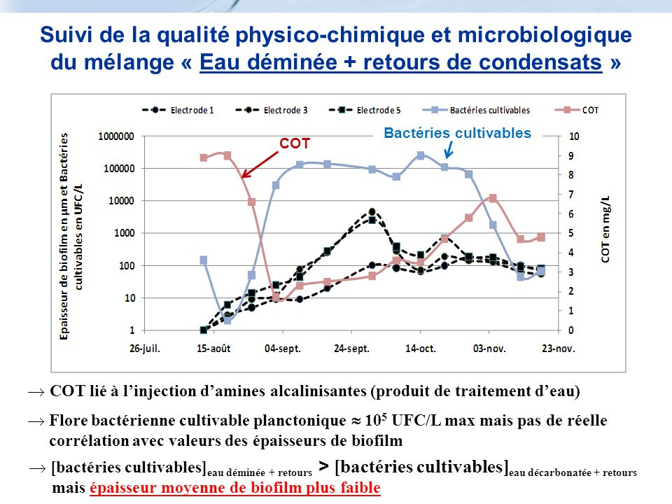 COT Bactéries cultivables COT lié à linjection damines alcalinisantes (produit de traitement deau) Flore bactérienne cultivable planctonique 10 5 UFC/