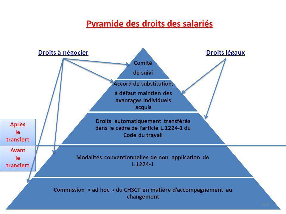 Comité de suivi Accord de substitution, à défaut maintien des avantages individuels acquis Droits automatiquement transférés dans le cadre de larticle