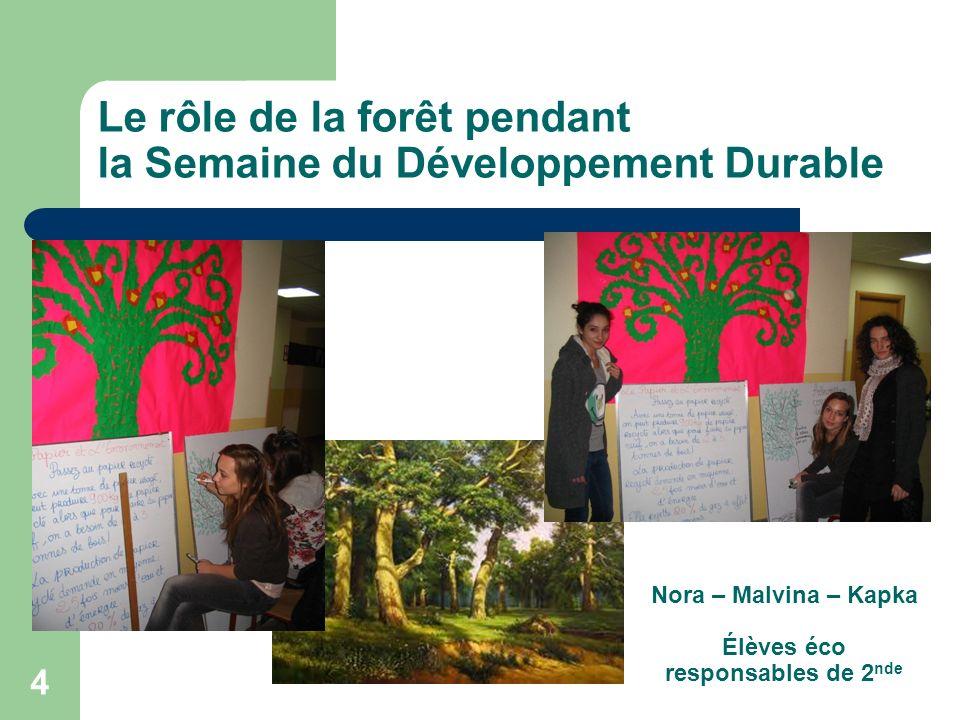 4 Le rôle de la forêt pendant la Semaine du Développement Durable Nora – Malvina – Kapka Élèves éco responsables de 2 nde