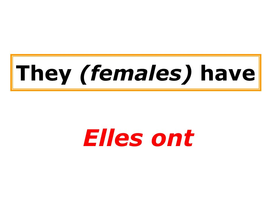 They (females) have Elles ont