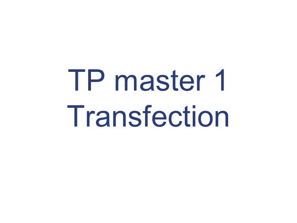 La transfection des cellules eucaryotes Définition et Principe Transfert de gènes (ADNc) codant pour une protéine dans une cellule = protéine exogène Transfection Infection (méthode virale) Surexpression de cette protéine grâce à la machinerie cellulaire (transcription/traduction) ribosomes ARN protéine exogène ADN (2) Etude in situ (1) Etude à partir de lysat protéique (activité enzymatique) Une cellule eucaryote