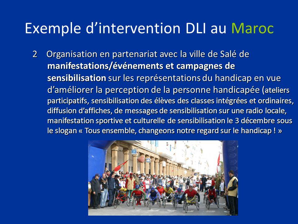 Exemple dintervention DLI au Maroc 2 Organisation en partenariat avec la ville de Salé de manifestations/événements et campagnes de sensibilisation su