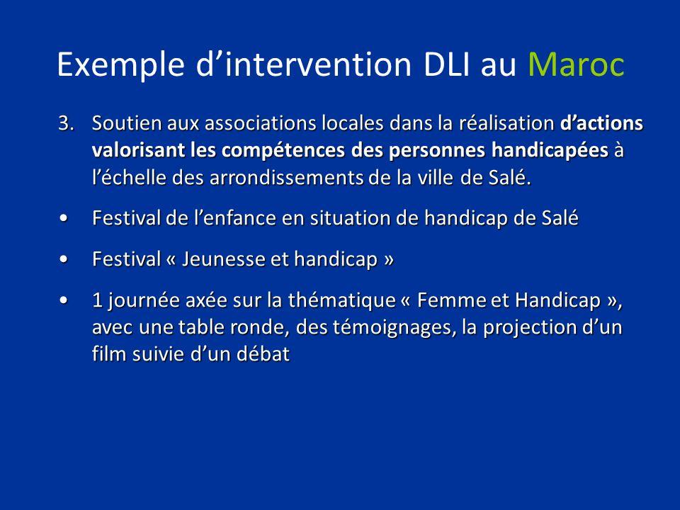 Exemple dintervention DLI au Maroc 3.Soutien aux associations locales dans la réalisation dactions valorisant les compétences des personnes handicapée