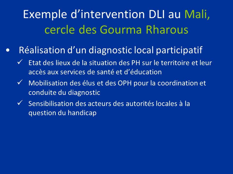 Exemple dintervention DLI au Mali, cercle des Gourma Rharous Réalisation dun diagnostic local participatif Etat des lieux de la situation des PH sur l