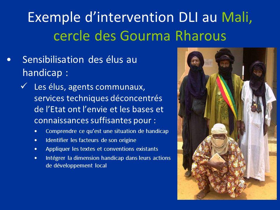 Exemple dintervention DLI au Mali, cercle des Gourma Rharous Sensibilisation des élus au handicap : Les élus, agents communaux, services techniques dé