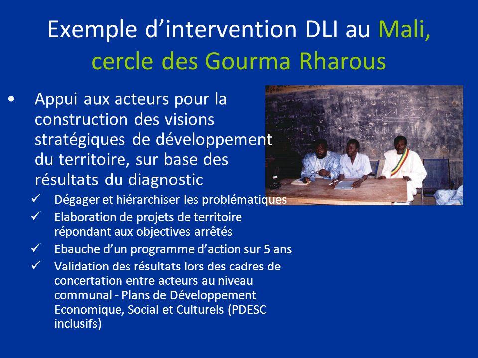 Exemple dintervention DLI au Mali, cercle des Gourma Rharous Appui aux acteurs pour la construction des visions stratégiques de développement du terri