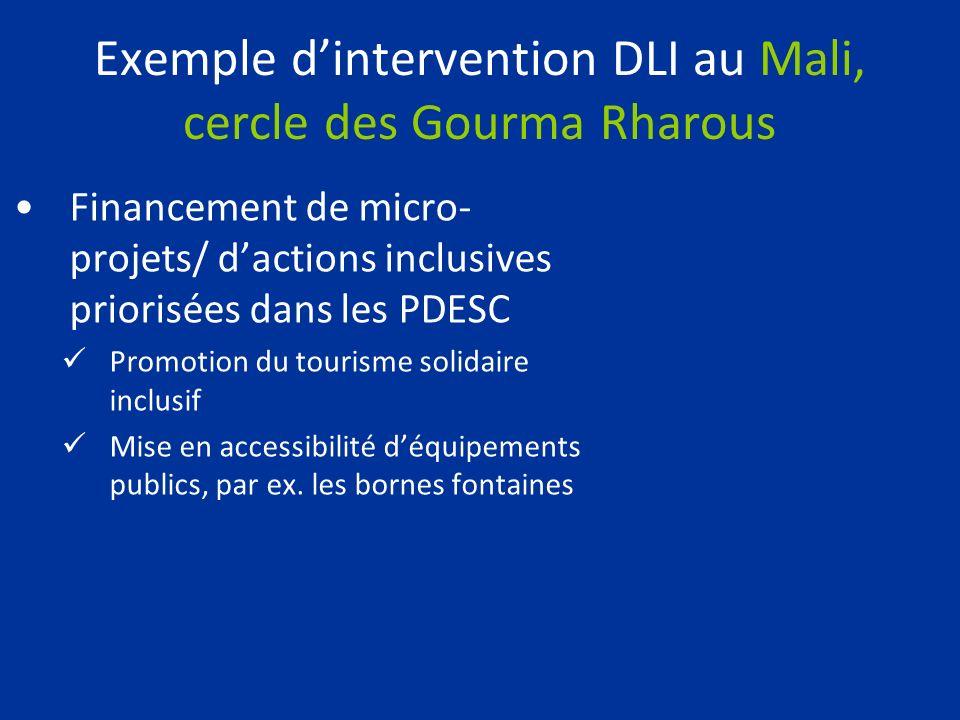 Exemple dintervention DLI au Mali, cercle des Gourma Rharous Financement de micro- projets/ dactions inclusives priorisées dans les PDESC Promotion du