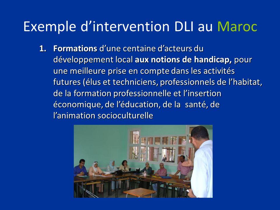 Exemple dintervention DLI au Maroc 1.Formations dune centaine dacteurs du développement local aux notions de handicap, pour une meilleure prise en com